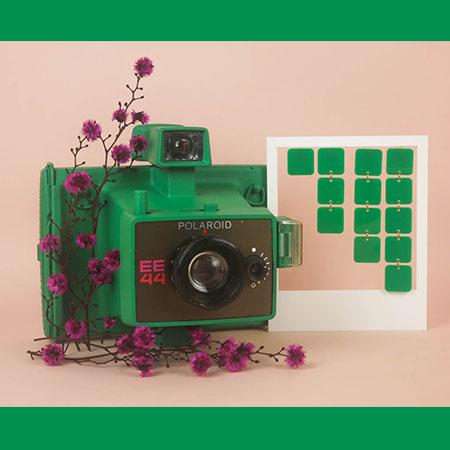 photo_miniature_georgette_vert