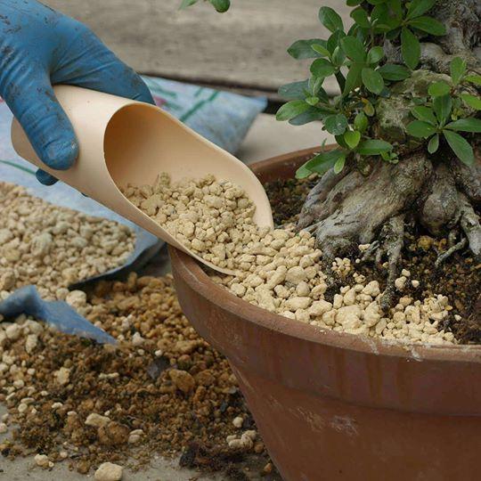 convogliatore in plastica di terriccio per bonsai