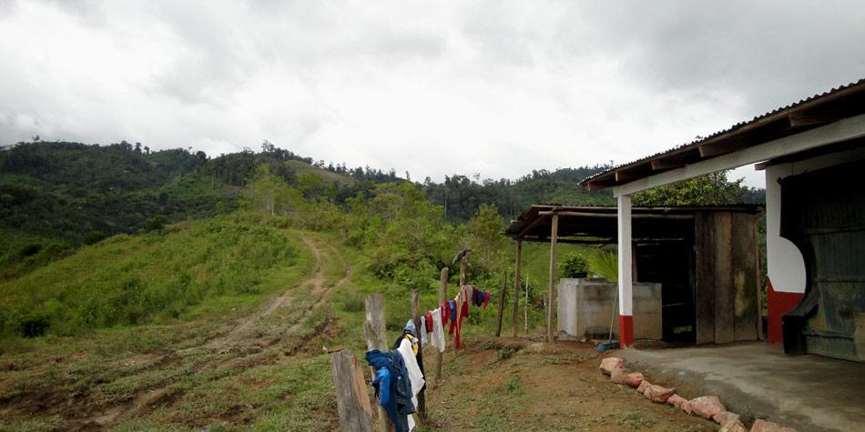 Fresh Market Hours Villages