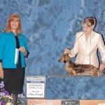 Rica Coronado Kennel Club