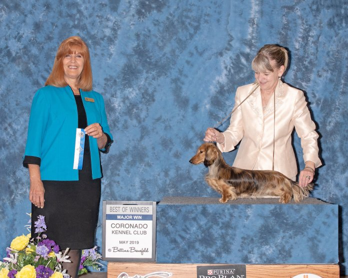 Rica Coronado Kennel Club