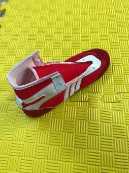 Boks Ayakkabısı, Güreş Ayakkabısı