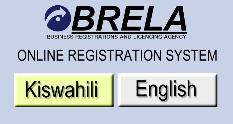 Default Logo Image for BRELA Online Registration System