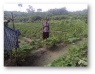 Um experimento em doação: Parte II - kiwanja.net 4