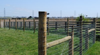 commercial-agricultural-fencing-015