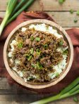Easy Freezer Korean Bulgogi