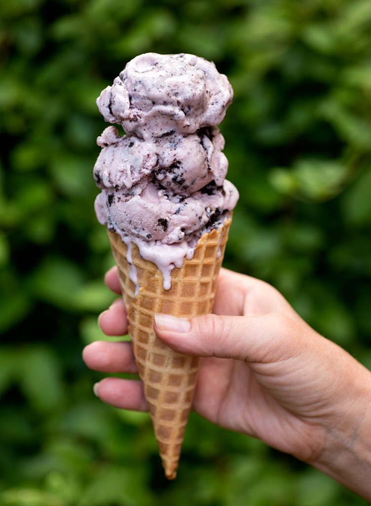 Summer Berry Oreo Ice Cream: Rich, velvety ice cream made with pureed fresh raspberries and blackberries and finished off with Oreo cookie chunks.