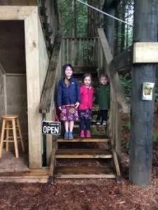 redwoods-treewalk-rotorua