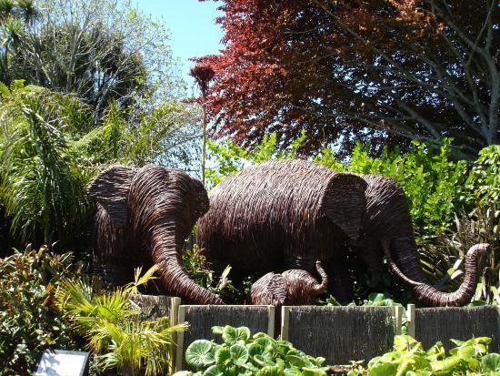 brooklands zoo