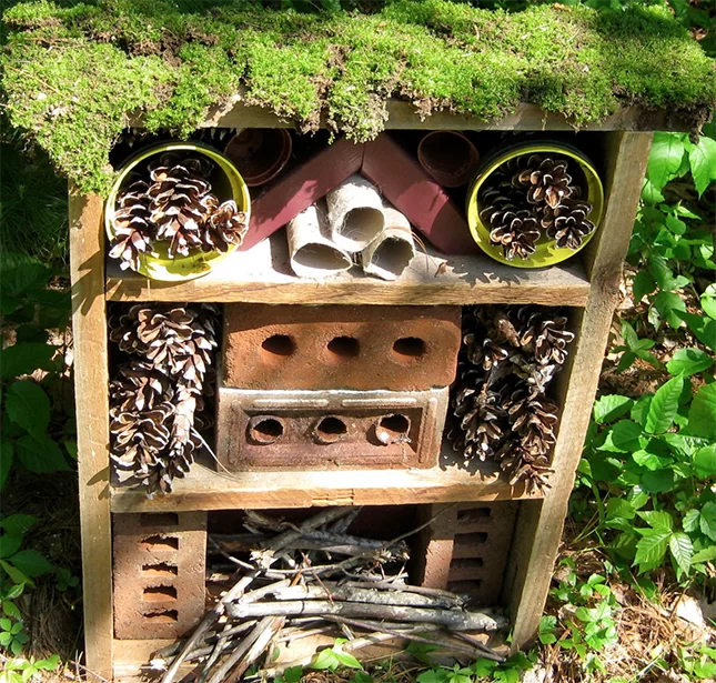 Department of Conservation-Bug hotel