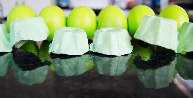 Egg shell caterpillar microgreen garden for kids