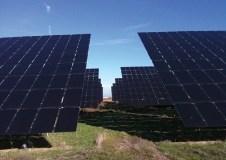 Gardens That Grow Gigawatts of Solar Power