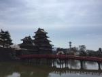 松本城/桜