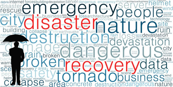 disaster recovery - The Disaster That Hit British Airways