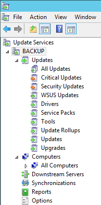 WSUS server name - WSUS - server name