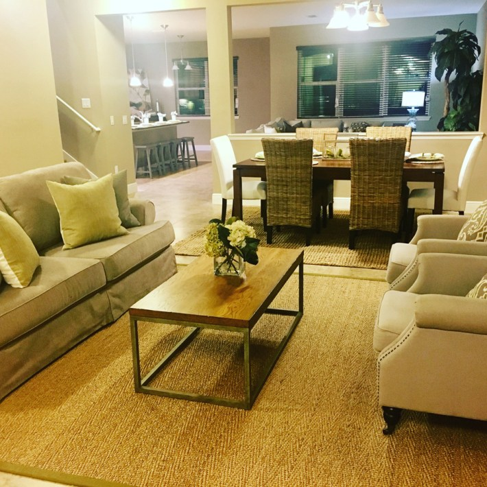 Home Staging Living Area