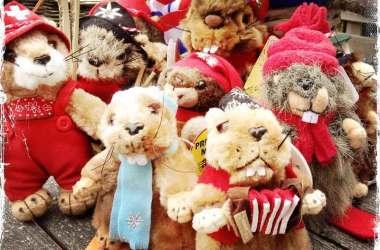 Marmotele cântărețe