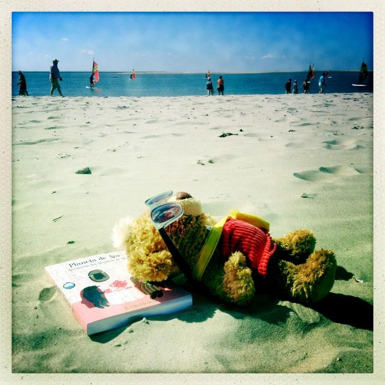 Knopf pe plaja Borkum