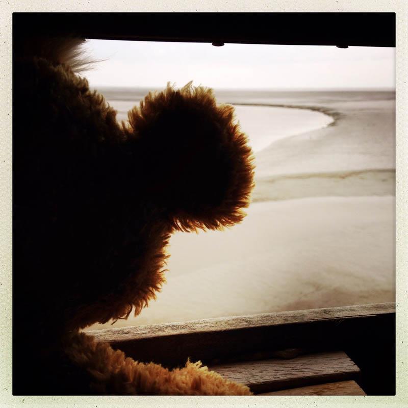 Vedere de la geam