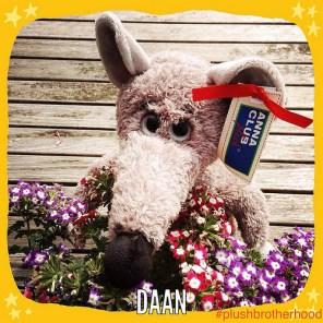 Daan - The Plush Brotherhood