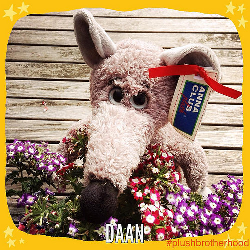 Daan - The Plush Brotherhood