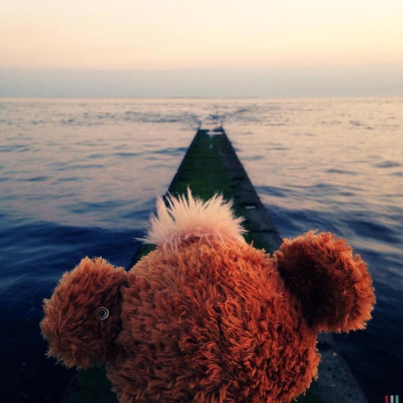 Knopf își învinge teama