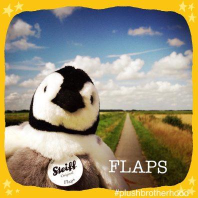 Flaps - Steiff - #30