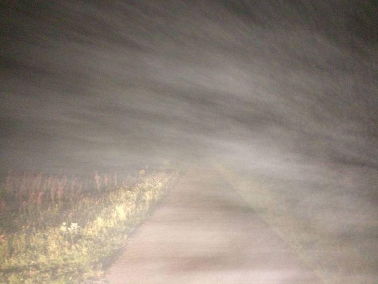 vălătuci de ceață olandeză