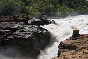 top 6 recommended activities to do in Murchison falls national park Uganda