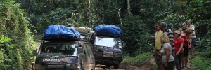 Mountain climbing tours in Uganda