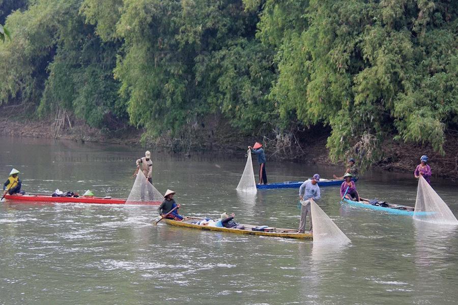 Pemprov Jawa Timur Susun Action Plan Suaka Ikan