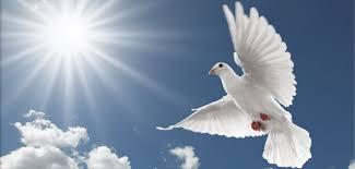 Dar rozumu - przyjdź Duchu Święty ja pragnę - nowenna do Ducha Świętego