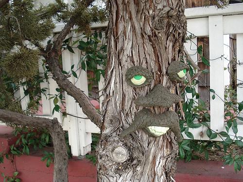 Tree Man Gallery