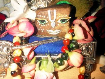 10 December - Mayapur (1)