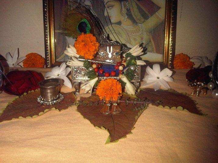 13 November - Mayapur