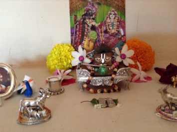 14 November - Mayapur (1)