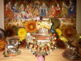 2 February - Mayapur (2)