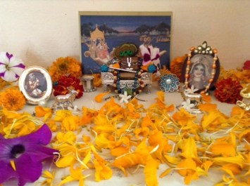 23 November - Mayapur (1)