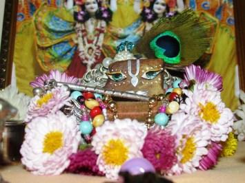 24 December - Mayapur (2)