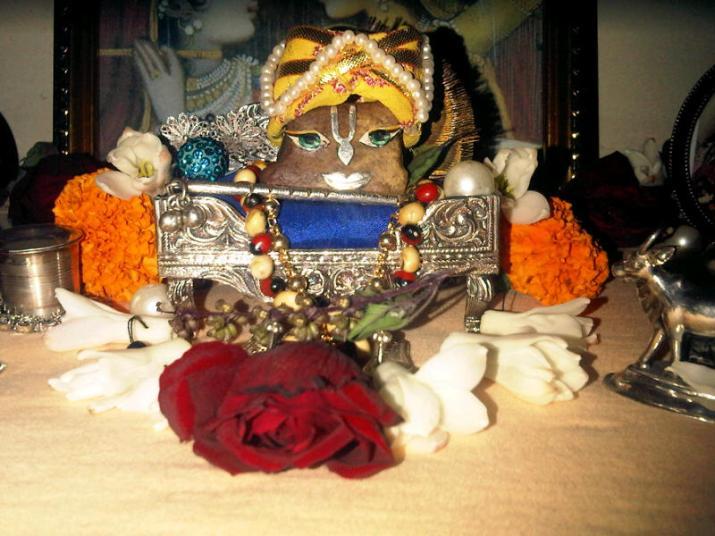 24 November - Mayapur (3)