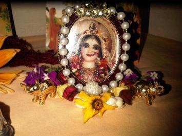 3 February - Mayapur (1)