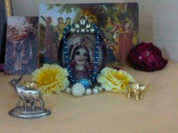 4 February - Mayapur (1)