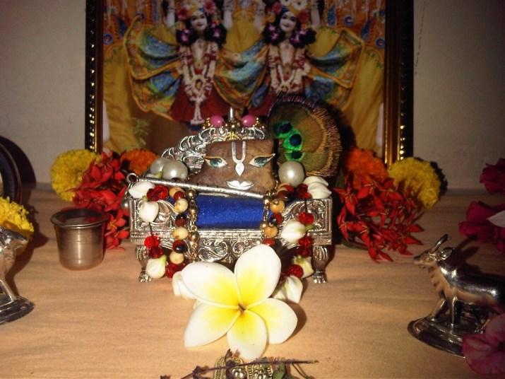 7 January - Mayapur