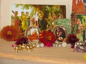 8 February - Mayapur (2)