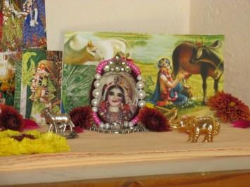 8 February - Mayapur (3)