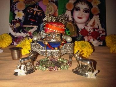 8 January - Mayapur (2)