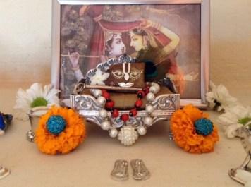 08 November - Mayapur