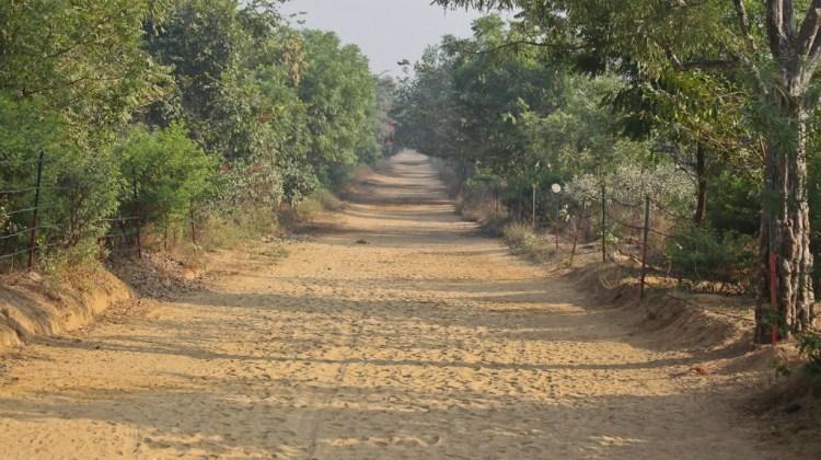 Govardhana-Hill