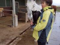 passie van Pearl het paard familie opstelling Yourway