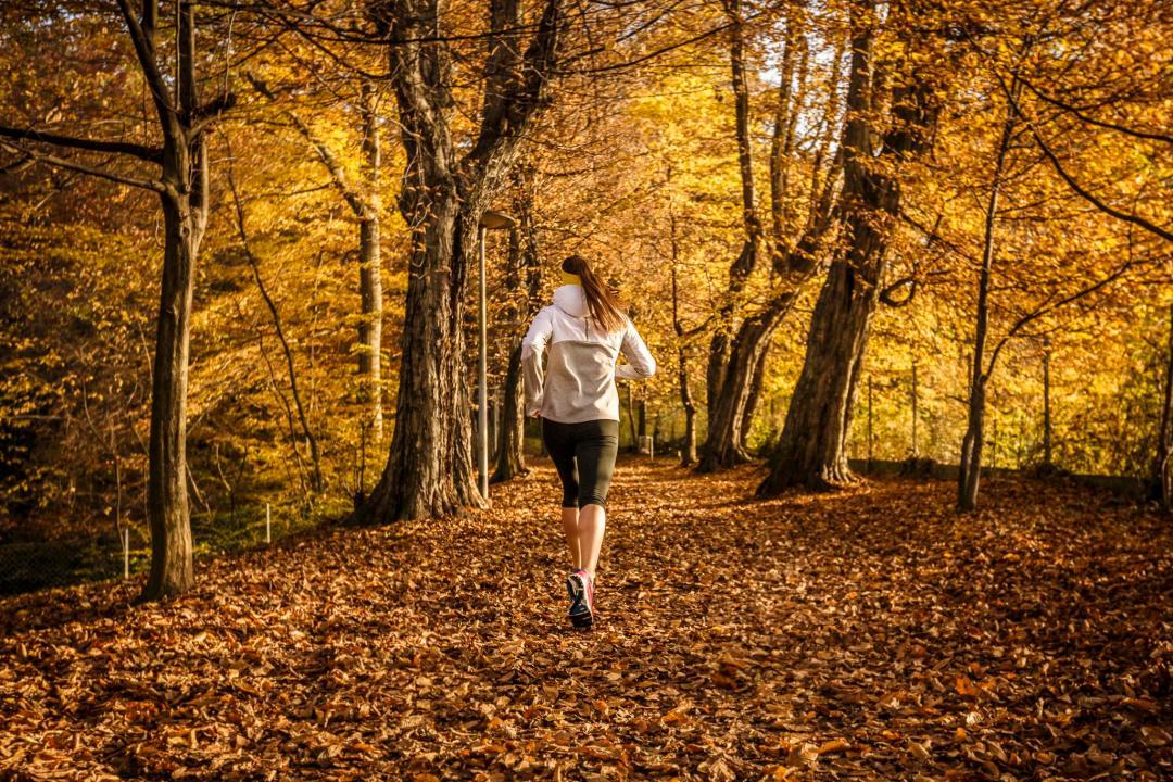 ausdauertraining-grundlagenausdauer-klara-fuchs-fitnessblog-sport-training-gesundheit-2